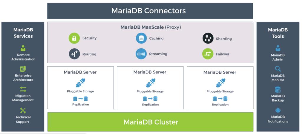 MariaDB TX